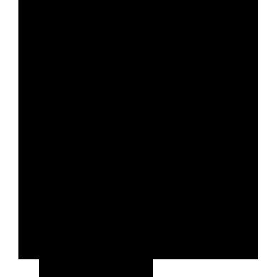 icon-rapeize